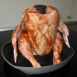 kylling-05